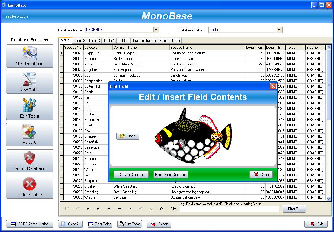 SSuite Office - MonoBase full screenshot